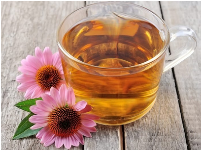 What is Echinacea Tea? | Personal Care N Heal