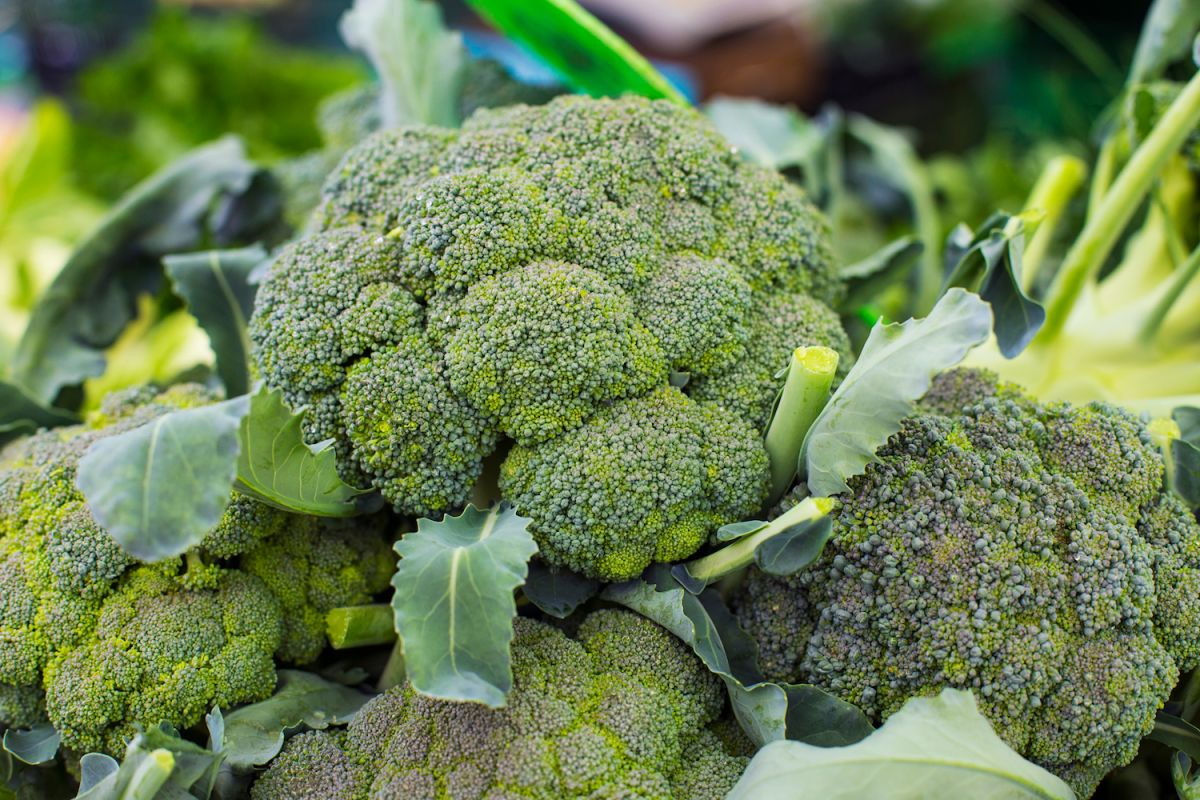 Broccoli Healthy food for immune system