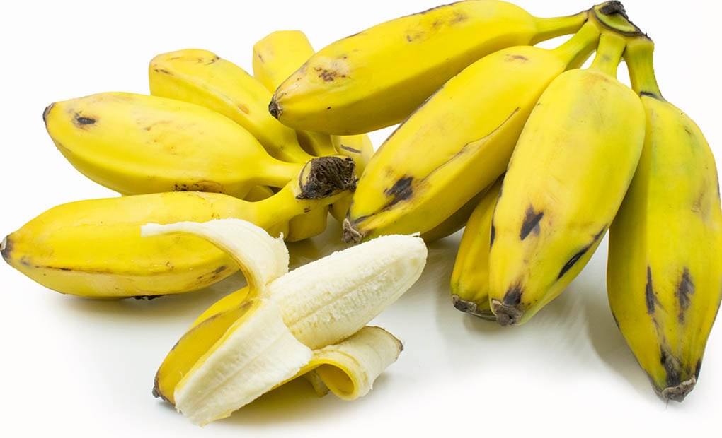 Reasons behind Eating Burro Bananas