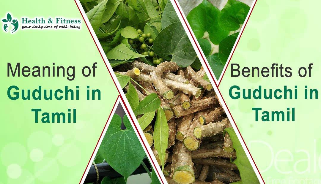 Guduchi in Tamil Benefits